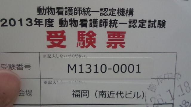 1393042732529.jpg