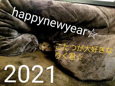 20201229_230151.jpg